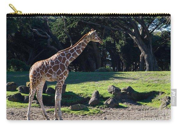 Giraffe Dsc2839 Carry-all Pouch