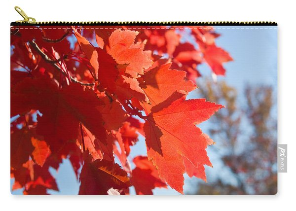 Glowing Fall Maple Colors 4 Carry-all Pouch