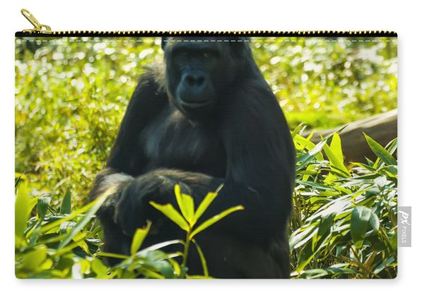 Gorilla Sitting On A Stump Carry-all Pouch