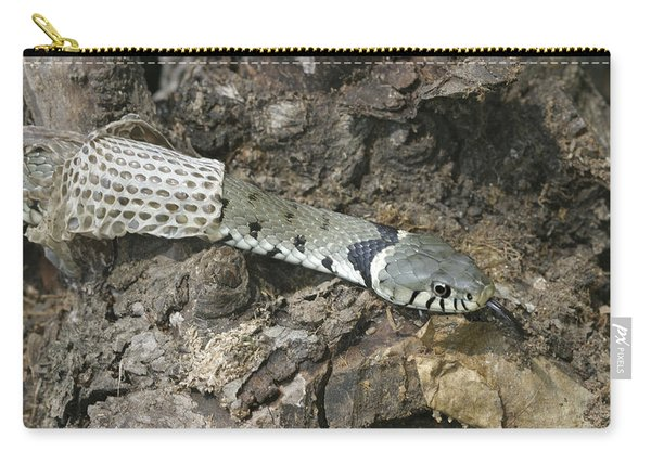Grass Snake Shedding Carry-all Pouch