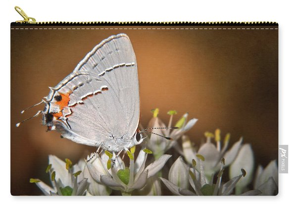 Gray Hairstreak Butterfly IIi Carry-all Pouch