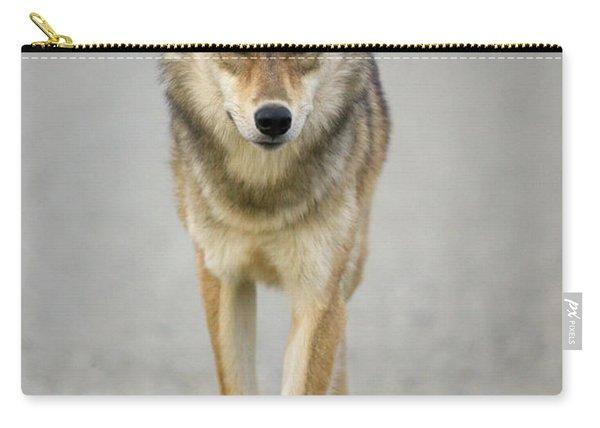 Gray Wolf Denali National Park Alaska Carry-all Pouch