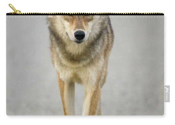 Gray Wolf Denali National Park Alaska Carry-all Pouch