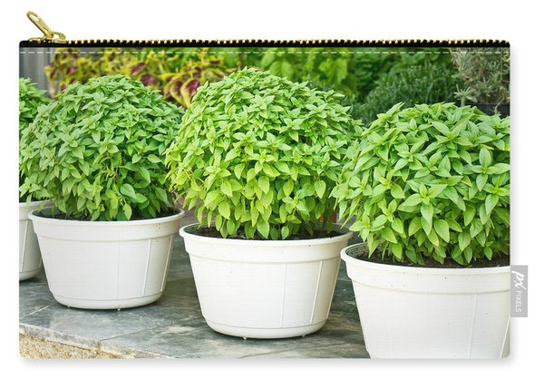 Greek Basil Carry-all Pouch