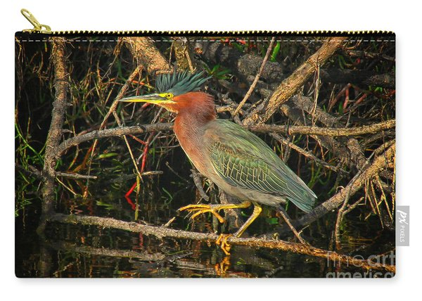 Green Heron Basking In Sunlight Carry-all Pouch
