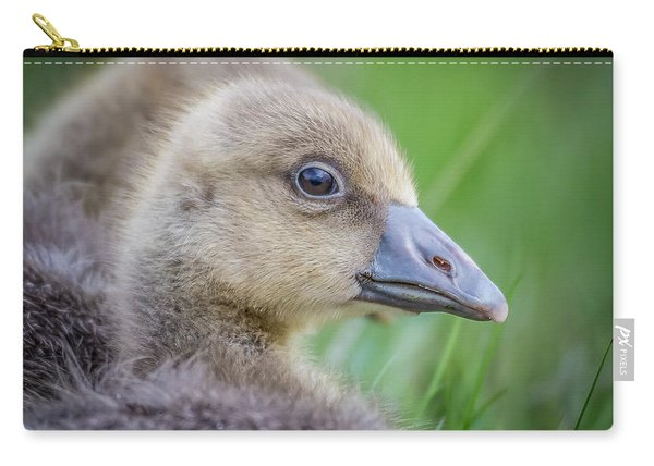 Greylag Goslings, Iceland Carry-all Pouch