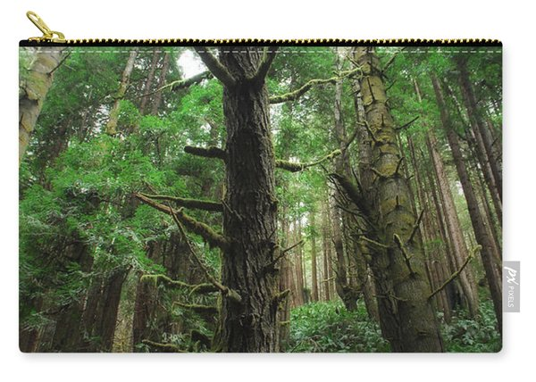 Groovin With The Redwoods Carry-all Pouch
