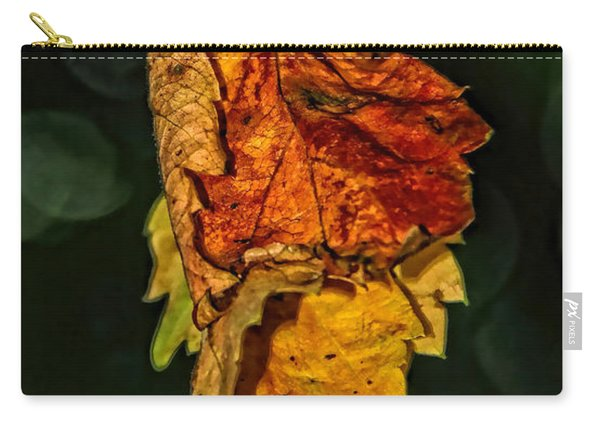 Hanging Gold Carry-all Pouch