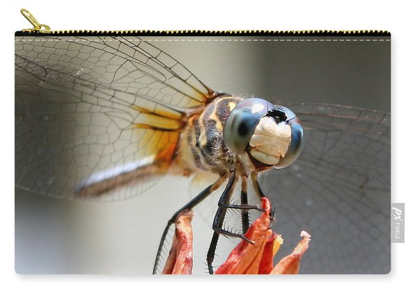 Happy Dragonfly Carry-all Pouch