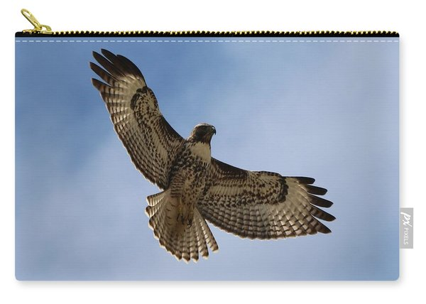 Carry-all Pouch featuring the photograph Hawk In Flight  by Christy Pooschke