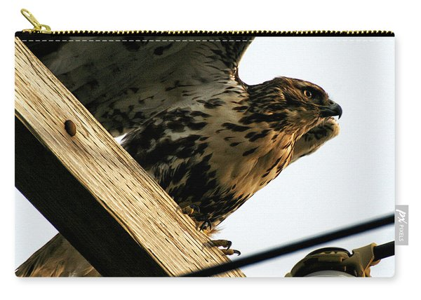 Hawk On Telephone Pole Carry-all Pouch
