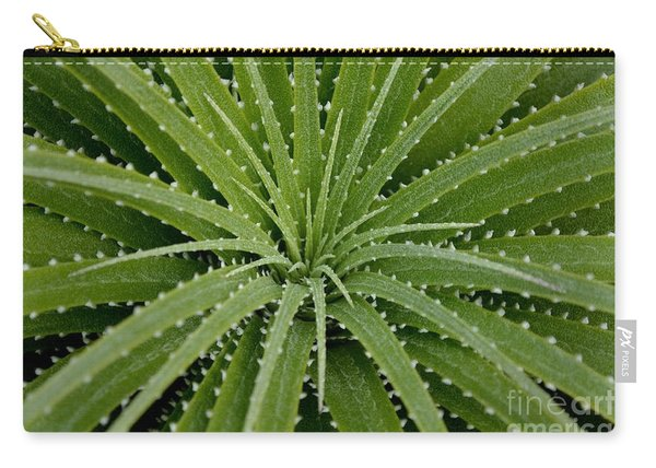 Carry-all Pouch featuring the photograph Hechtia Argentea by Scott Lyons