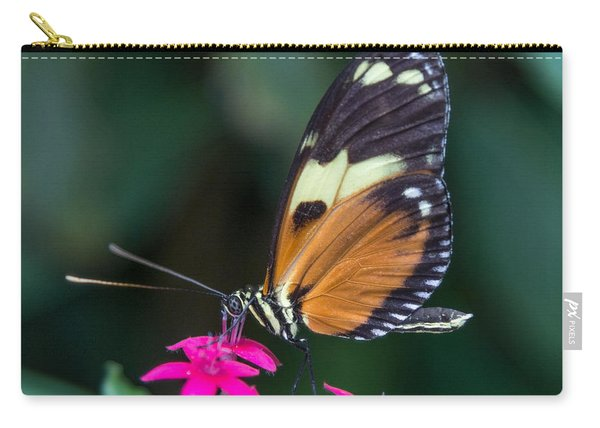 Heliconius Ismenius Carry-all Pouch