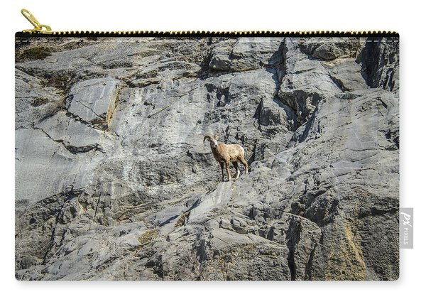 Big Horn Sheep Coming Down The Mountain  Carry-all Pouch