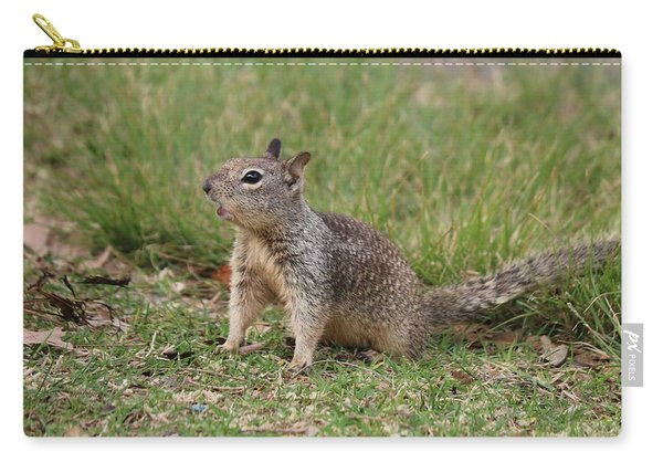 Carry-all Pouch featuring the photograph Hey There by Christy Pooschke