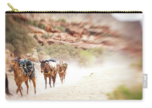 Horses Carrying Gear Out Of The Grand Carry-all Pouch