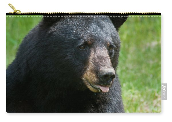 Hot Day In Bear Country Carry-all Pouch