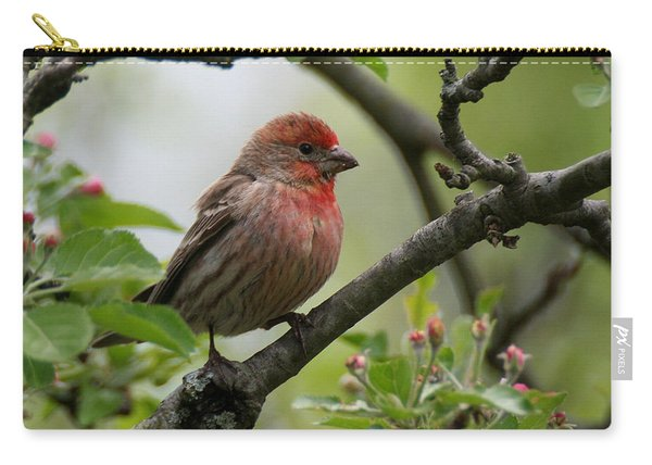 House Finch In Apple Tree Carry-all Pouch