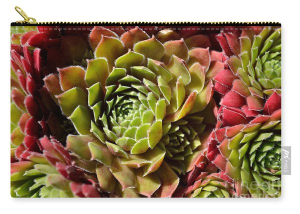 Carry-all Pouch featuring the photograph Houseleek Group by Scott Lyons