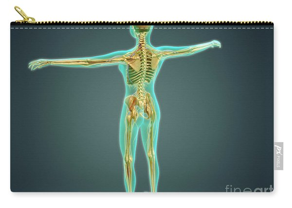 Human Body Showing Skeletal System Carry-all Pouch