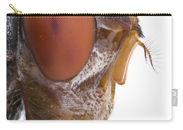 Human Botfly Belize Carry-all Pouch