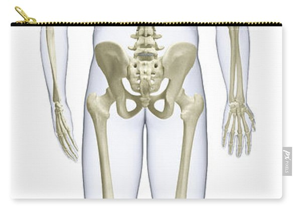 Human Skeleton, Rear View Carry-all Pouch
