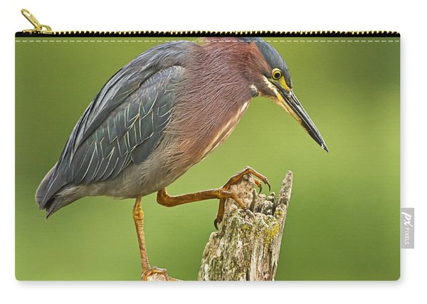 Hunting Green Heron Carry-all Pouch