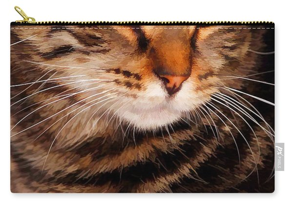 I Am Smiling Carry-all Pouch