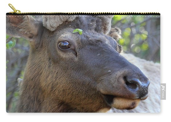I Have What On My Face? Carry-all Pouch