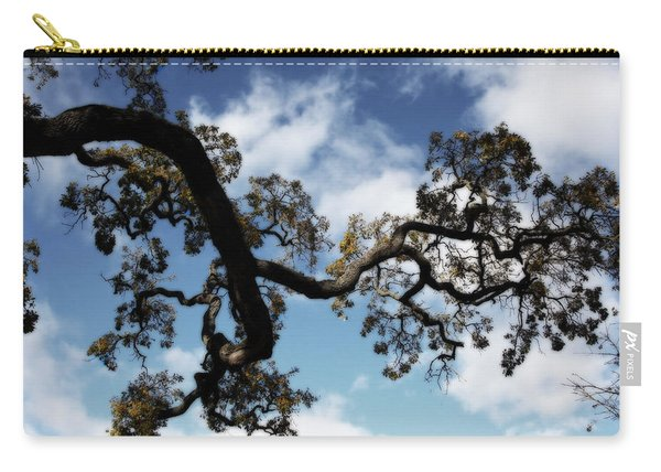 I Touch The Sky Carry-all Pouch