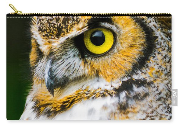 In The Eyes Carry-all Pouch