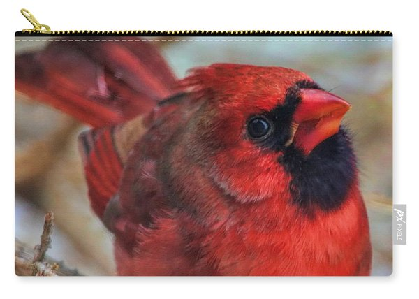 Inquisitive Cardinal Carry-all Pouch