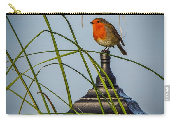 Irish Robin Perched On Garden Lamp Carry-all Pouch