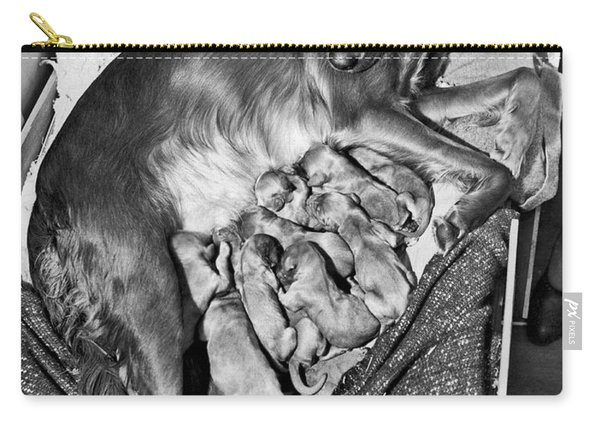 Irish Setter With 12 Puppies Carry-all Pouch