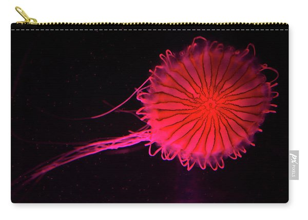 Jellyfish In Aquarium Of Quebec Carry-all Pouch