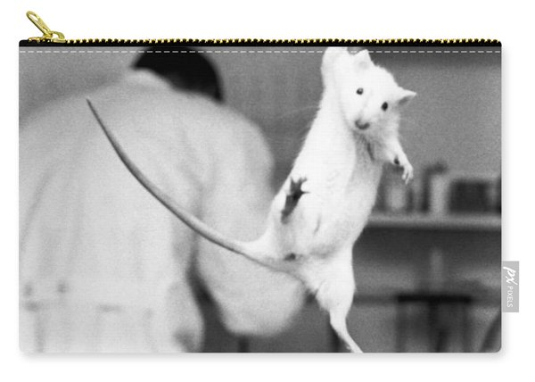 Just Hanging Lab Rat Carry-all Pouch