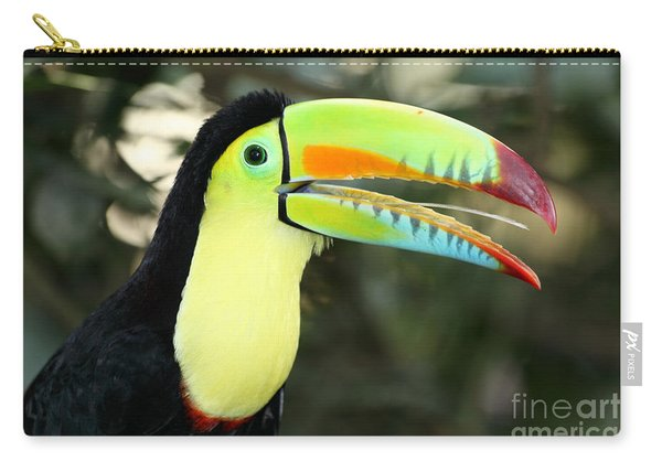 Keel Billed Toucan Carry-all Pouch