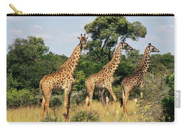 Kenya Africa Masai Mara Game Reserve 3 Carry-all Pouch