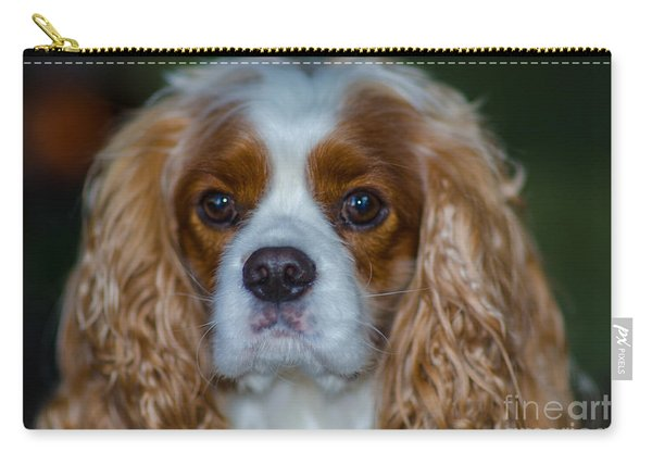 King Charles Carry-all Pouch