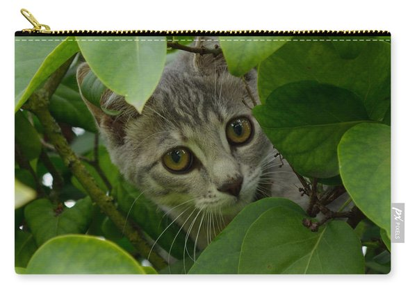 Carry-all Pouch featuring the photograph Kitten In The Bushes by Scott Lyons