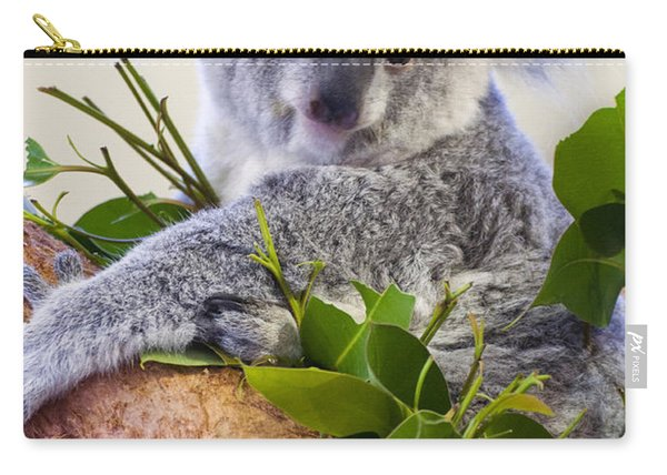 Koala On Top Of A Tree Carry-all Pouch