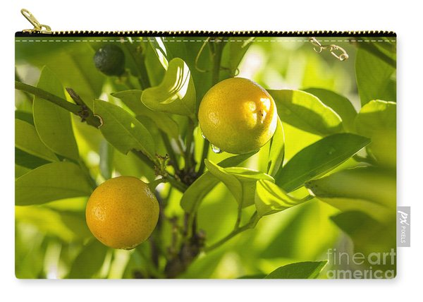 Kumquats Carry-all Pouch