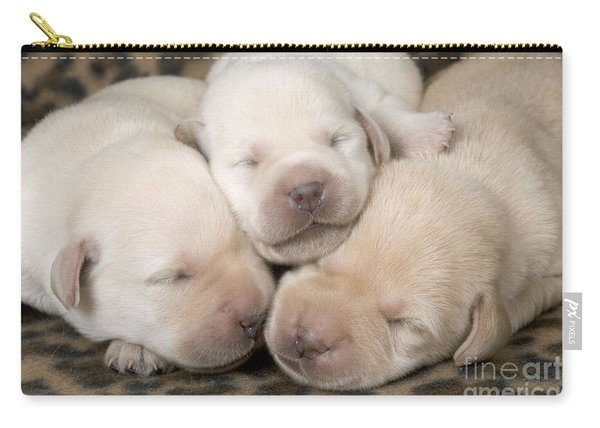 Labrador Puppy Dogs Carry-all Pouch