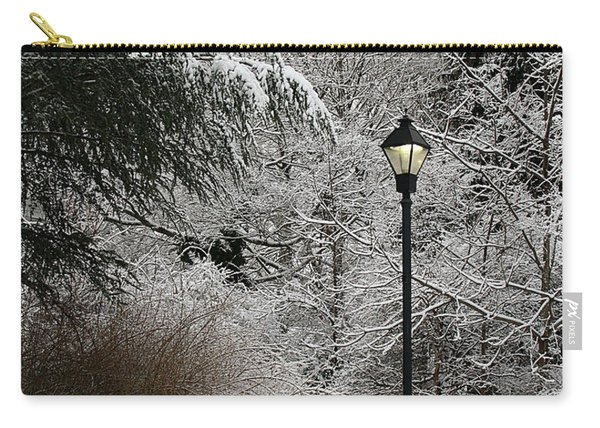 Lamp Post In Winter Carry-all Pouch