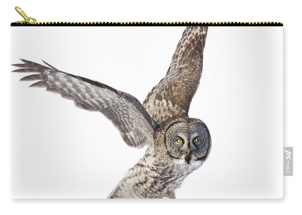 Lapland Owl On White Carry-all Pouch