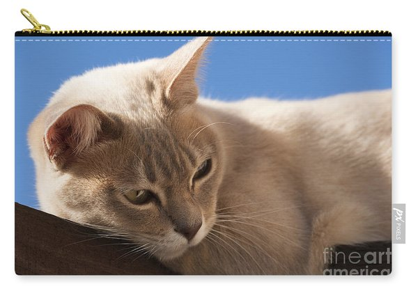 Lazing About Carry-all Pouch