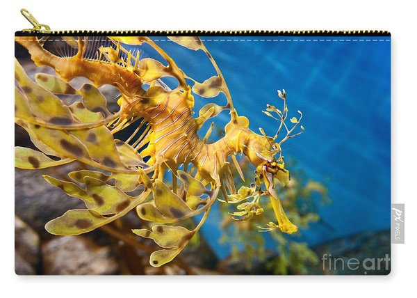 Leafy Sea Dragon Phycodurus Eques. Carry-all Pouch