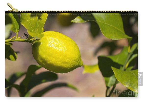 Lemon Tree Very Pretty Carry-all Pouch