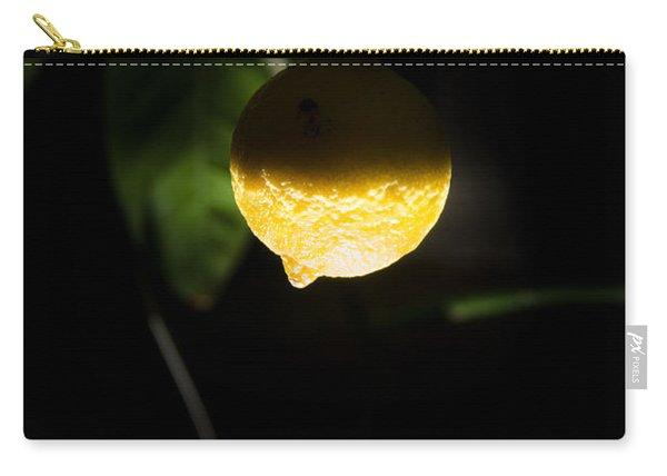 Lemon's Planet Carry-all Pouch