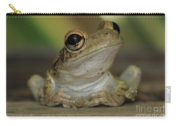Let's Talk - Cuban Treefrog Carry-all Pouch